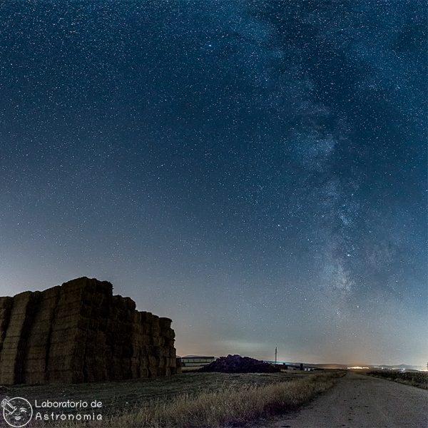 Segovia starlight trigo